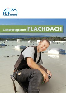 Flachdach S1